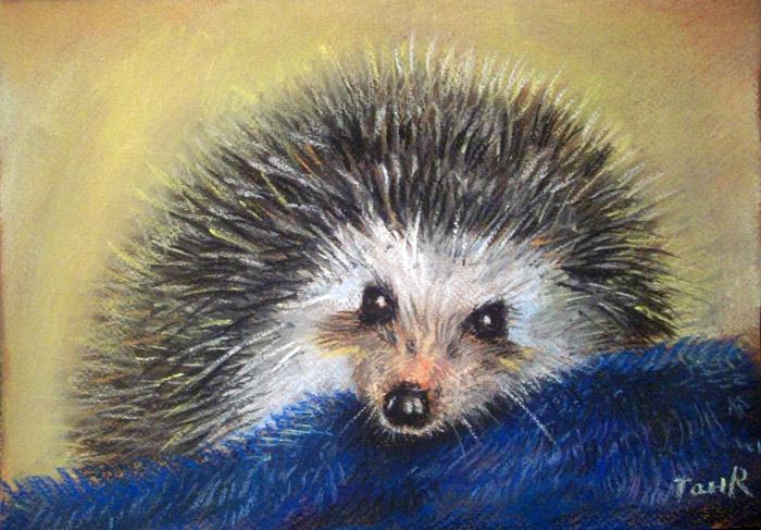 Мастер класс по сухой пастели «Рисуем животных»
